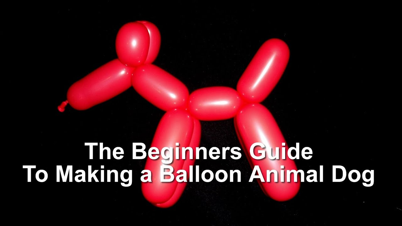balloon animal dog instructions