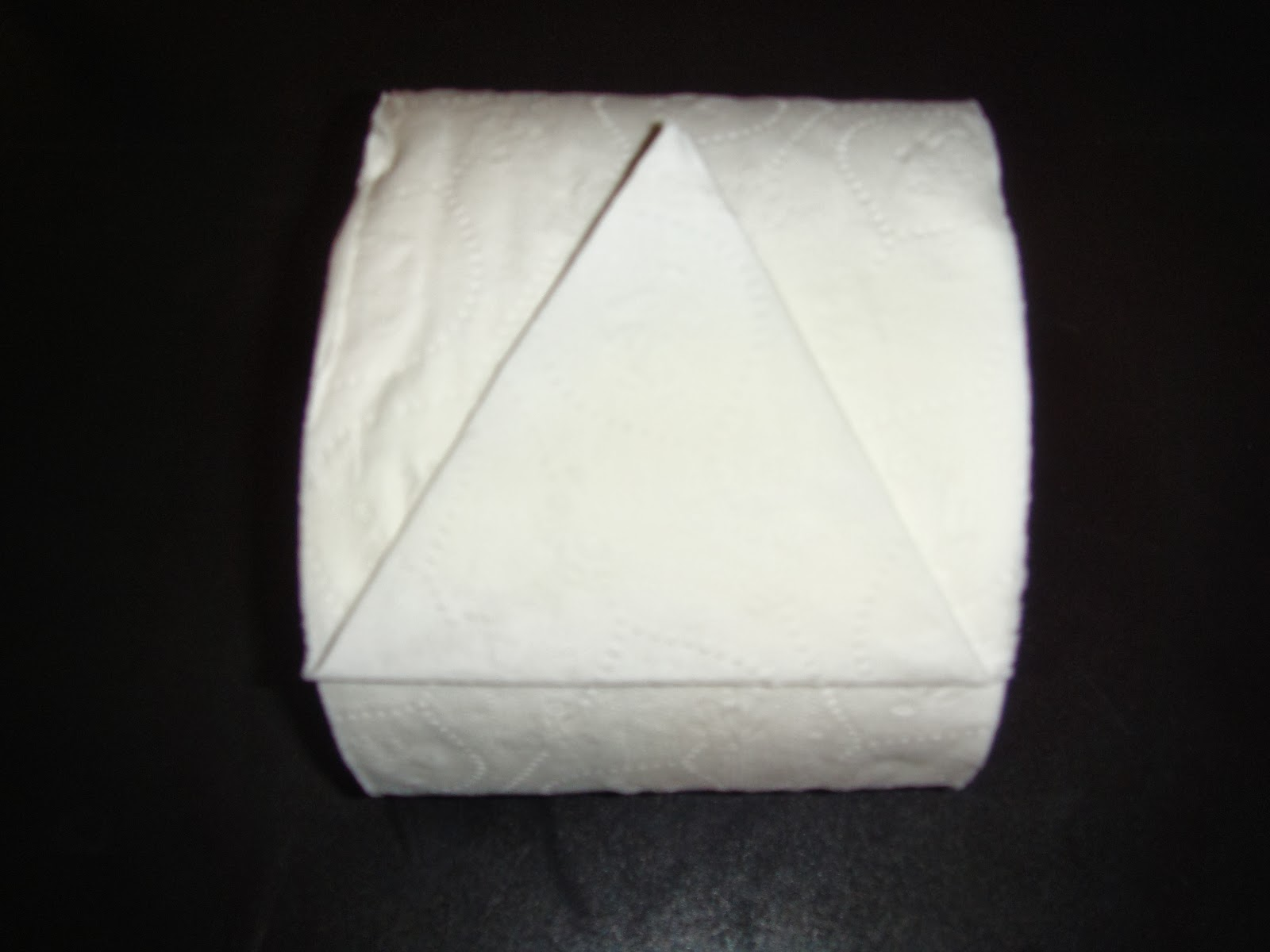toilet paper origami instructions